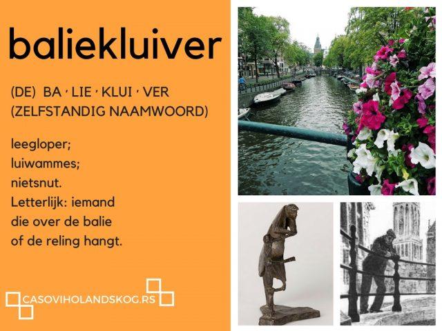 skype casovi holandskog